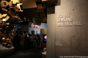 Guests at The Dallas Mineral Collecting Symposium have a chance for a private viewing of the Lyda Hill Gems and Minerals Hall at The Perot Museum. The Mamones Photography